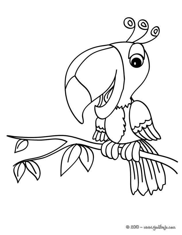 Dibujo para colorear tucan | Dibujos | Pinterest | Tucan, Colorear y ...