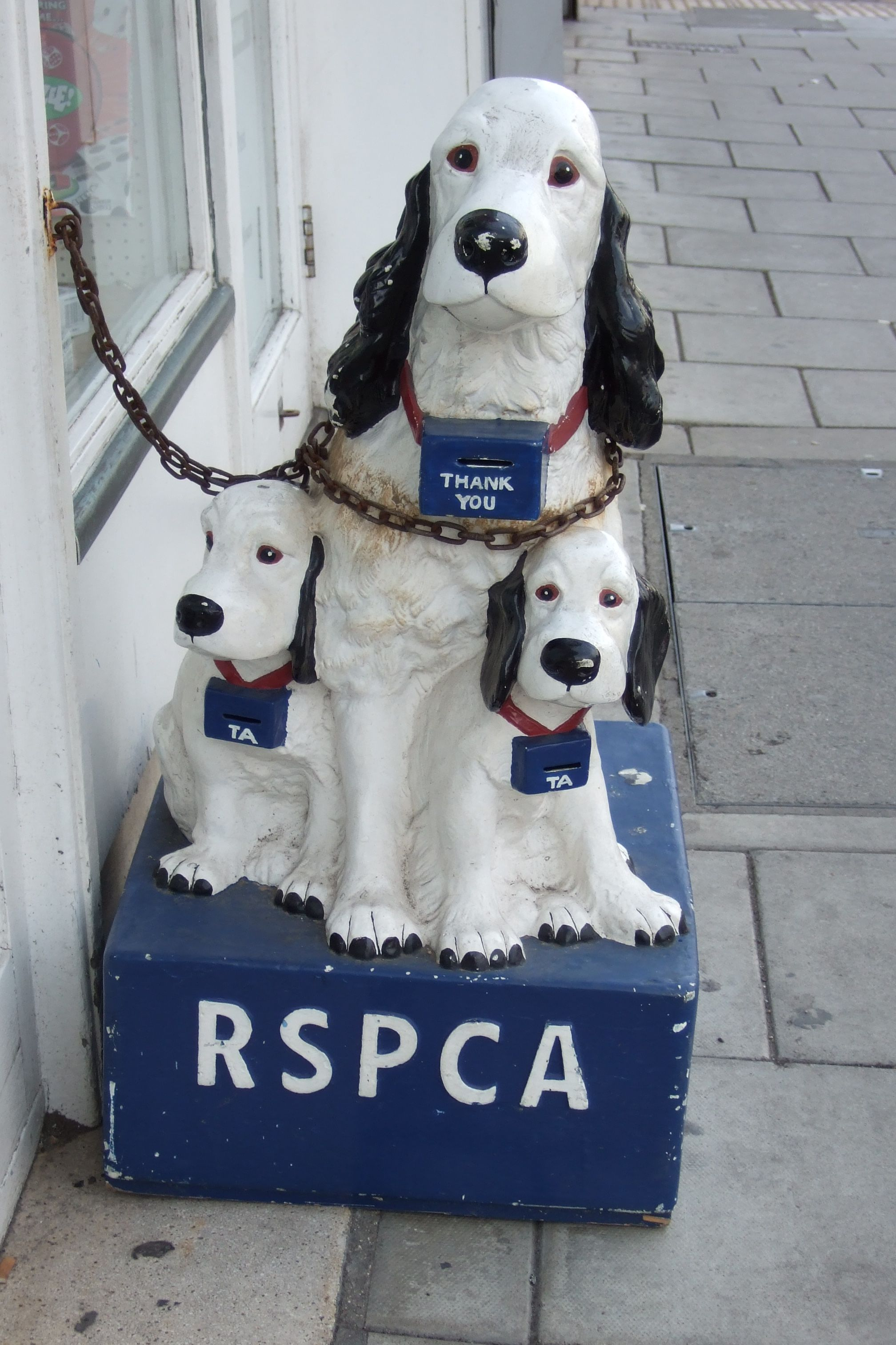 Bridlington Dogs (With images) Collection box, Pet shop