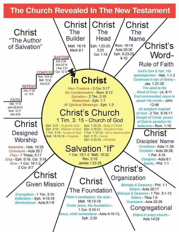 The church revealed in the New Testament | Bible/Christian