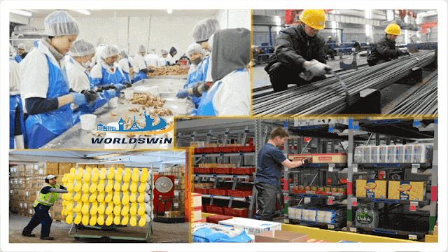 Production Workers Factories Job New Zealand Food Manufacturing