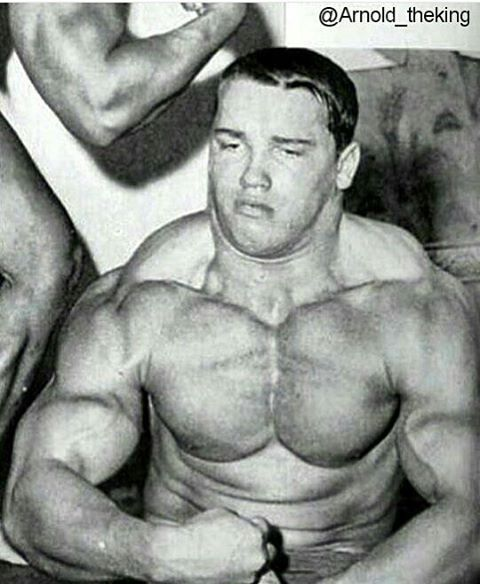 Image result for don howorth training routine arnold pinterest image result for don howorth training routine malvernweather Image collections