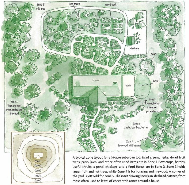 Conseils pour cr er son jardin en permaculture jardin for Creer son jardin paysager
