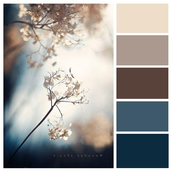 Schöne Herbstliche Farbkombination, Auch Passend Für Eine Hochzeit Oder  Winter   Beautiful Color Combination Forfall / Autum; Works For Weddings  And Winter ...