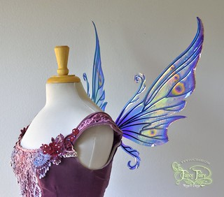 Peacock Serena Fairy Wings Side View Fairy Wings Fairy Wings Drawing Fairy Crafts