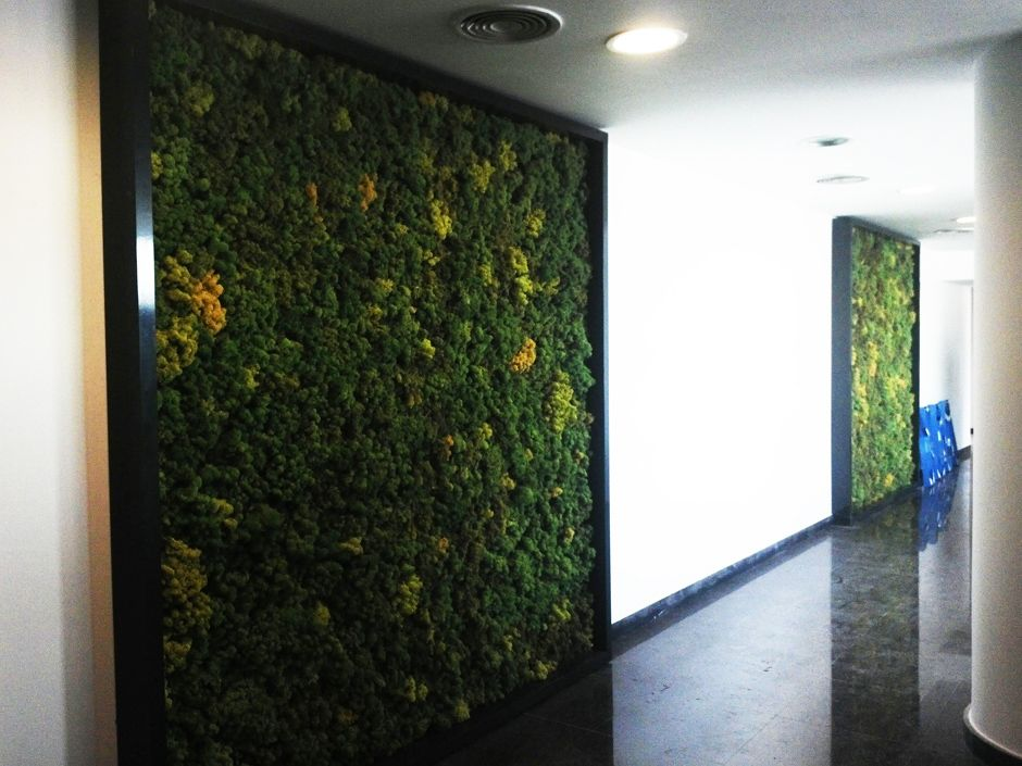 mosswall,wall,design,nature,natural,landscape,architect,   www