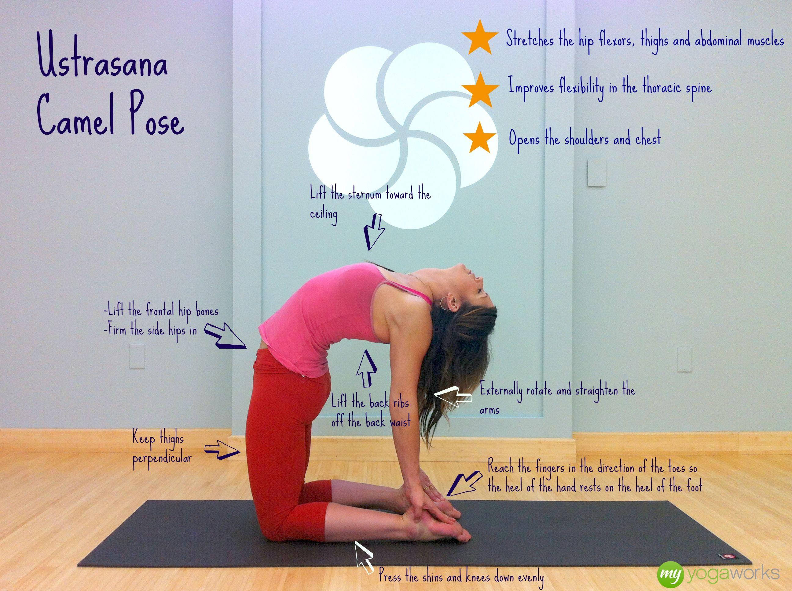 Breaking Down the Pose - Ustrasana (Camel Pose)   Yoga   Pinterest ...