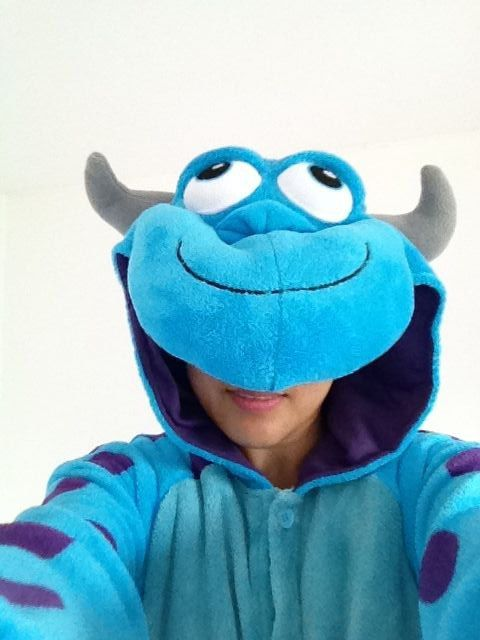 Animal Pillow That Turns Into Pajamas : my sulley onesies...do you like? cheap onesies http://www.sale-pajama.com/ adult animal ...