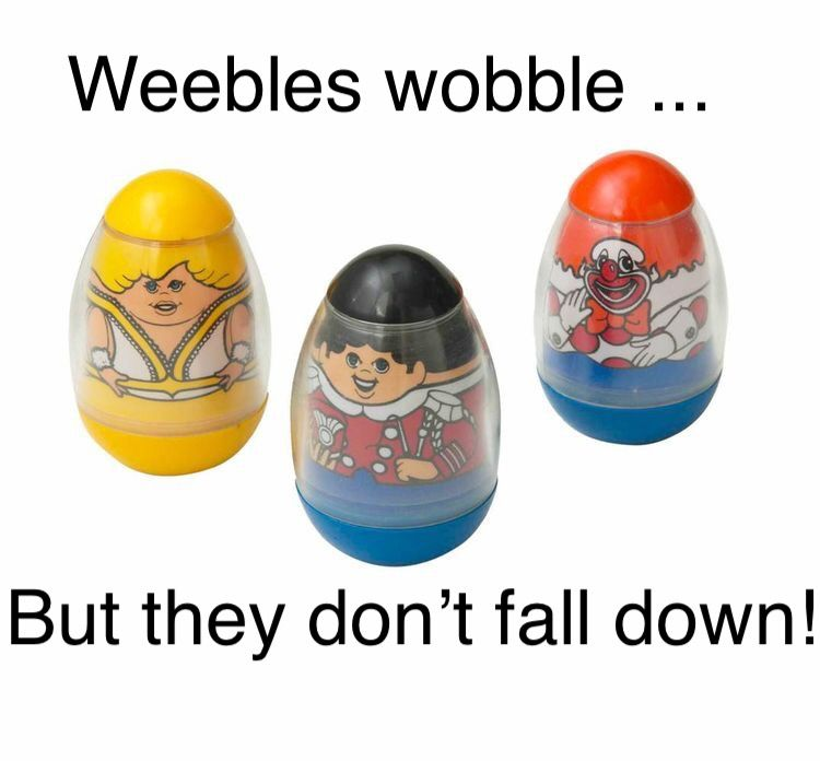 Image result for weebles wobble but they don't fall down