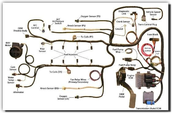 37bfac48bb1fe94b9d37e9e43c093d5f southern performance systems gen iv wire harness kits ls3 l92 gm ls3 crate engine wiring diagram at bayanpartner.co
