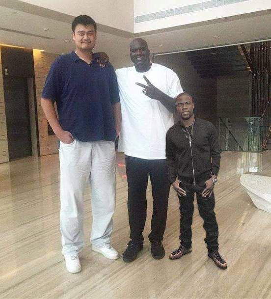 THIS IS JUST TOO FUNNY! From Tall to Short: Yao Ming ...