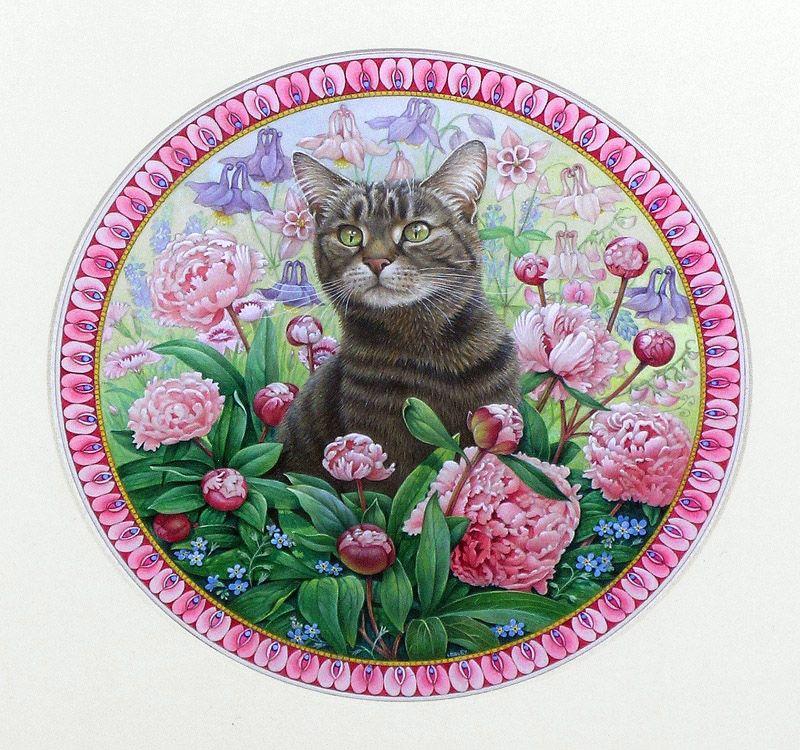 картинки кошек в кругах отличия