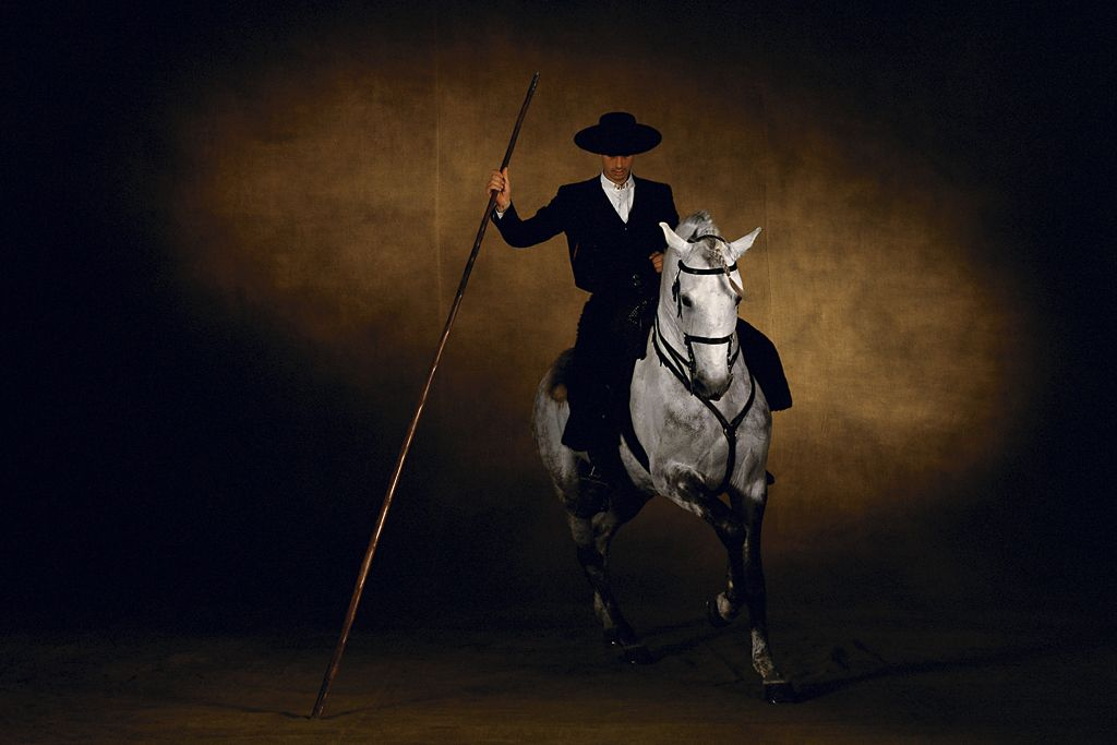 Epingle Par Anne V Sur Equine World Portraits D Animaux Arthus Bertrand Cheval