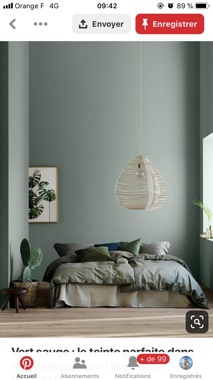Code Couleur Vert Sauge Épinglé par cloé verlaguet sur appartement   peinture verte