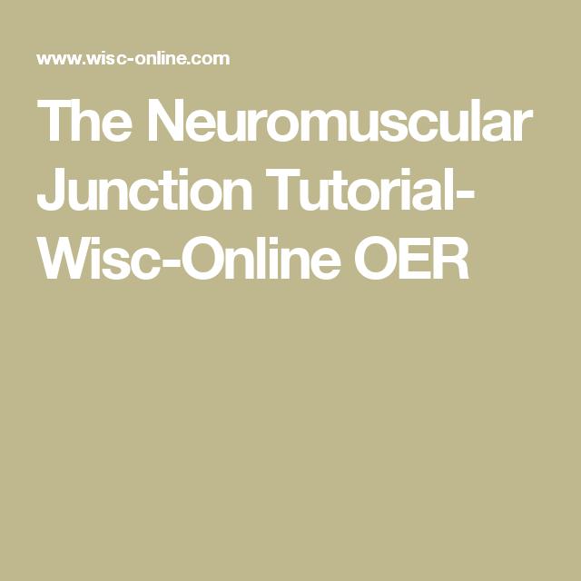 The Neuromuscular Junction Tutorial- Wisc-Online OER | Anatomy ...