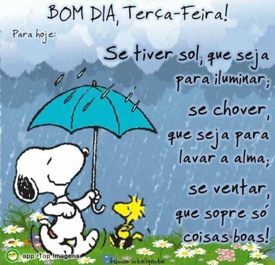 Bom Dia Terça Feira Terça Feira Frases Snoopy Y Snoopy Quotes