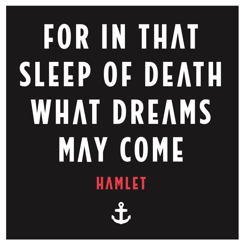 Quotes From Hamlet Hamlet What Dreams May Come Quote  Treatments  Pinterest .