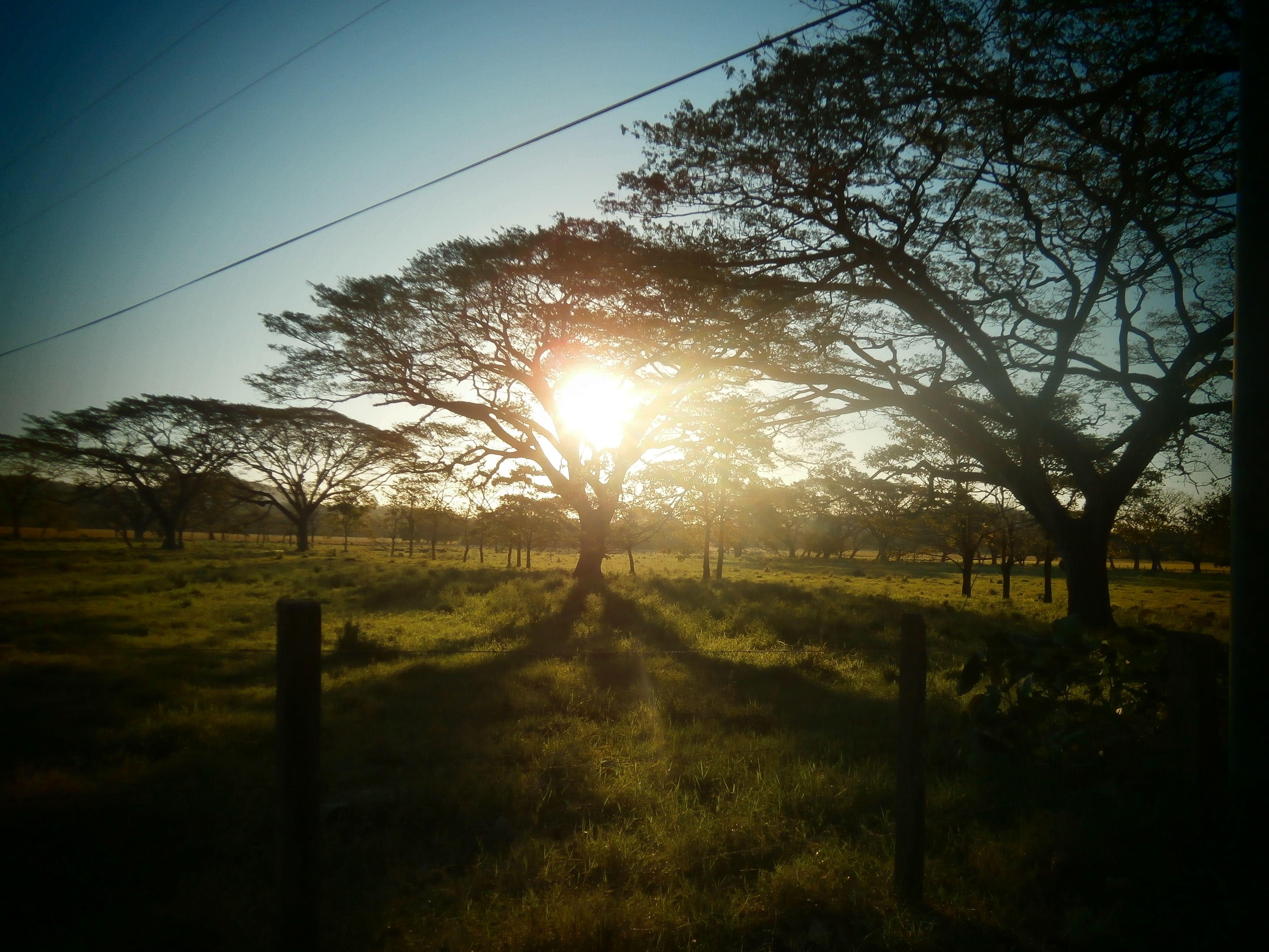 Costa Rica, beauty of nature in Guanacaste http://costarica-relax.com