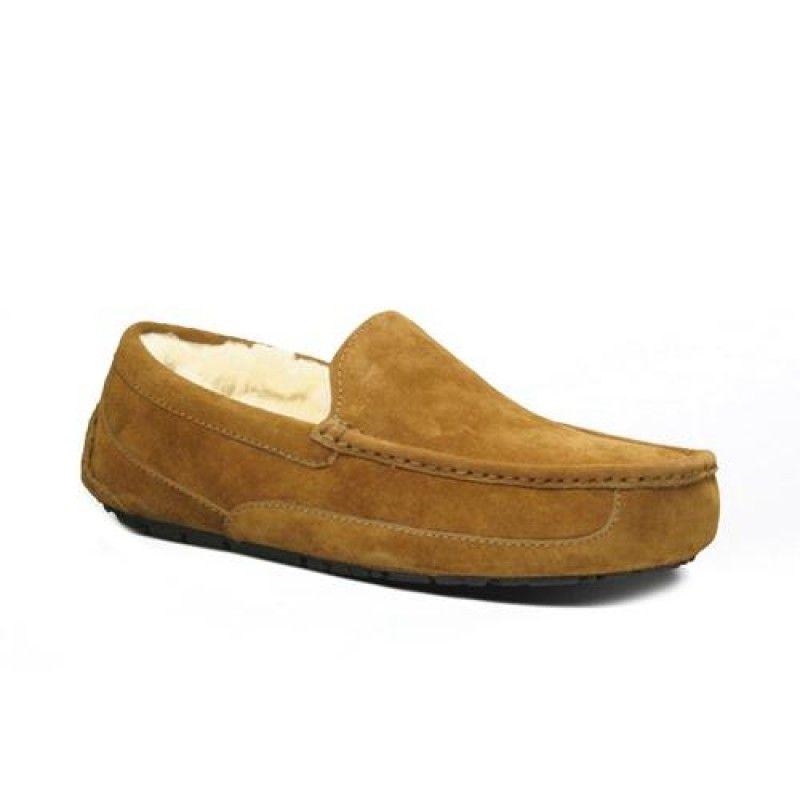 Uggs Ascot 5775 Are 2014 Pretty Boots