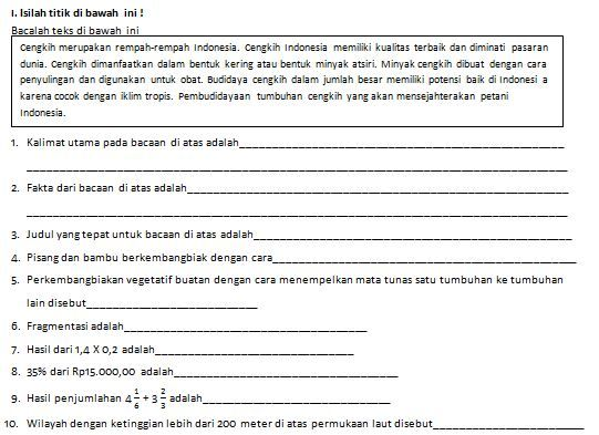 Soal Bahasa Indonesia Kelas Vi Sd Semester I