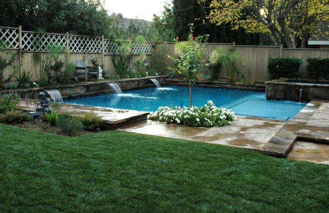 Plants To Put Around The Pool Backyard Pool Landscaping