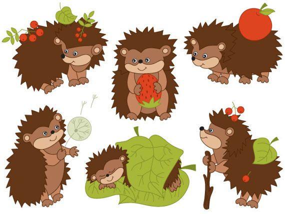 Hedgehogs Clipart Digital Vector Woodland Berry Forest Etsy Clip Art Cute Hedgehog Hedgehog