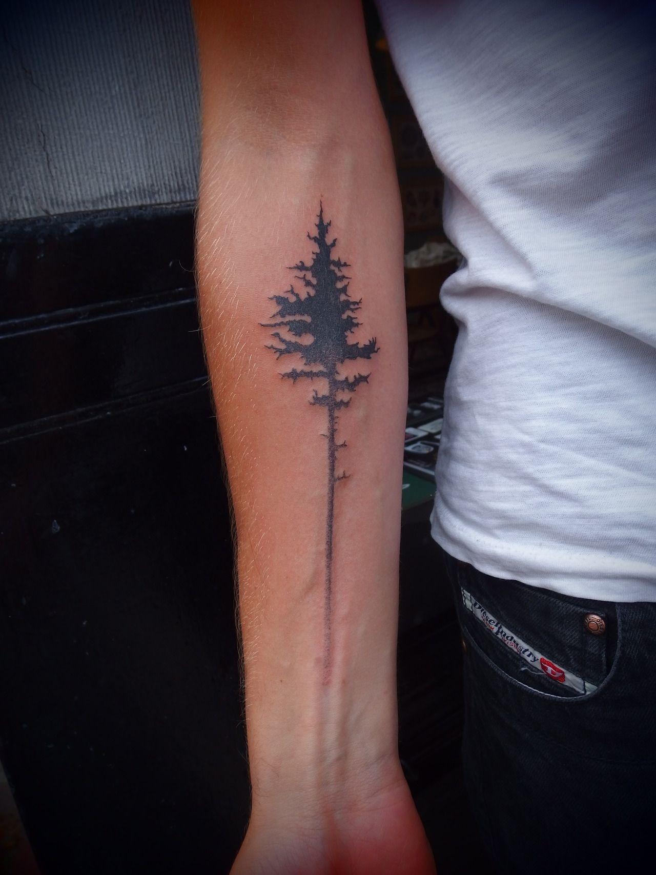 Pine Tree Tattoo This Is Fantastic Tattoos Tree Tattoo Forearm Scar Tattoo
