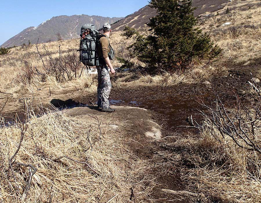 how to turkey hunt public land