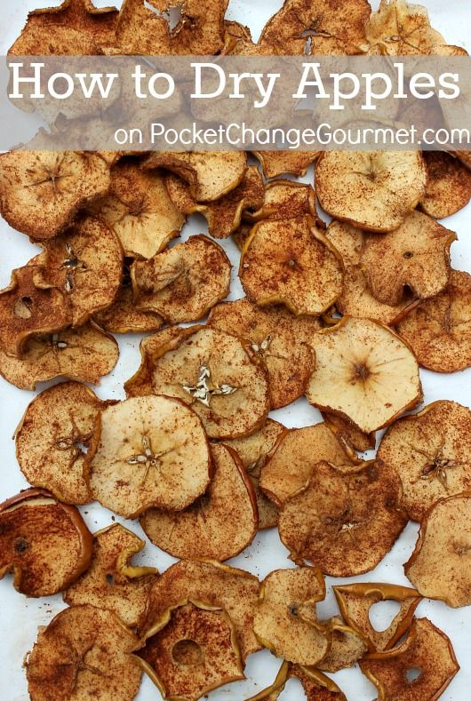 How to Dry Apples + 6 Uses for Dried Apples including recipes & crafts :: on