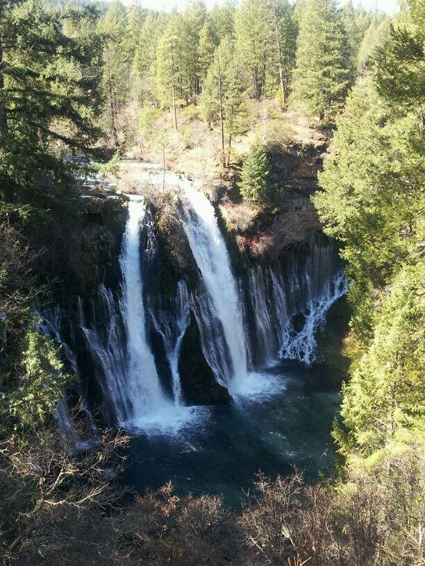 #AAAInspector 101: #BurneyFalls will take your breath away! 1 hr from #MountShasta California. #hike & picnic. $8 entry.