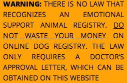 Visit This Website Get Your Emotional Support Animal Letter Online
