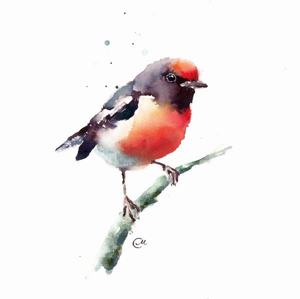 Watercolor Birds Bird Art Watercolor Art