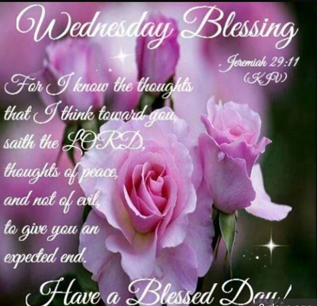 Wednesday Blessing