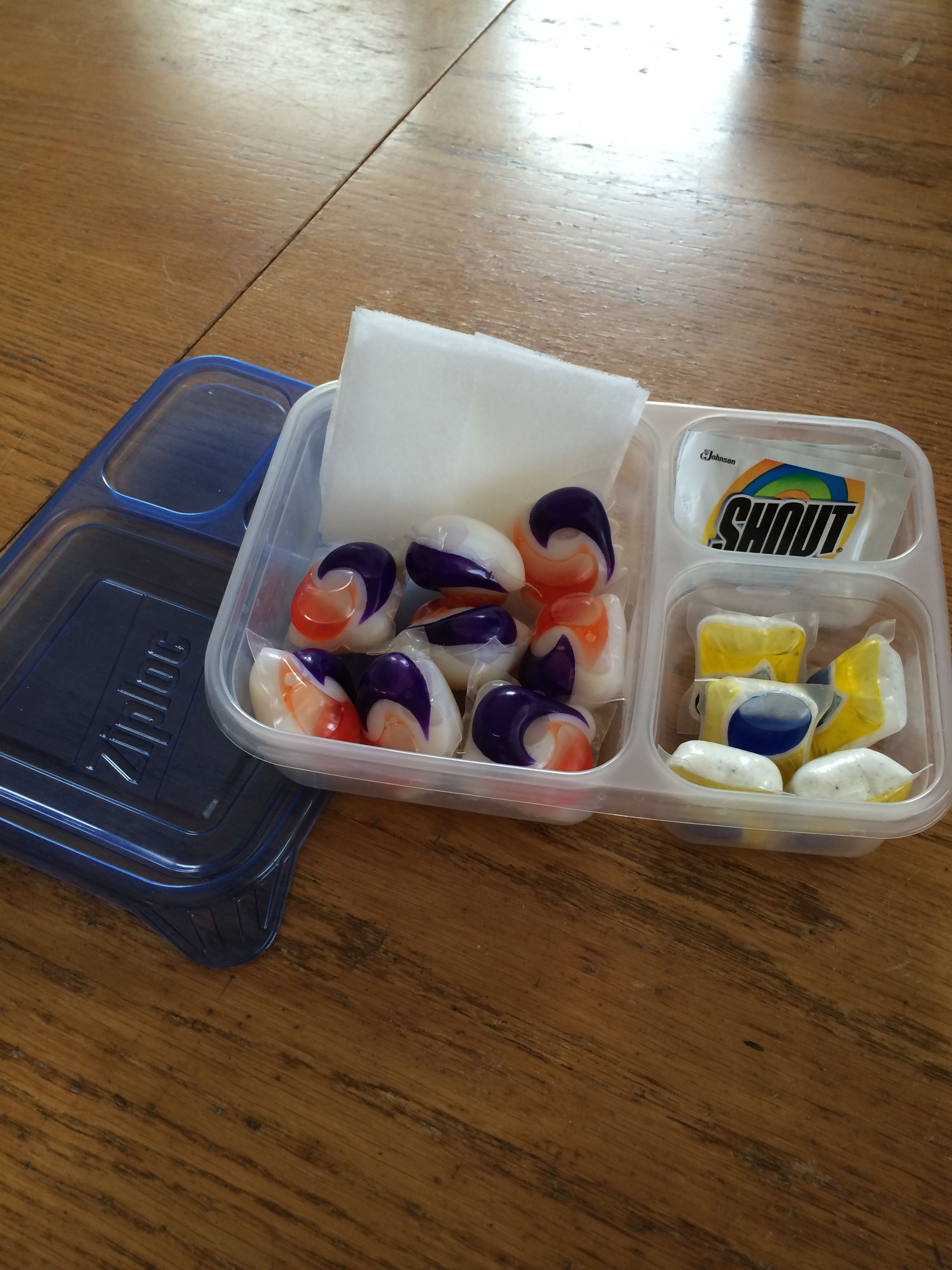 I put this together for our vacation rental! Dishwasher pods, laundry pods, dryer sheets, and Shout stain remover. All in a Ziploc divided container. Very compact!