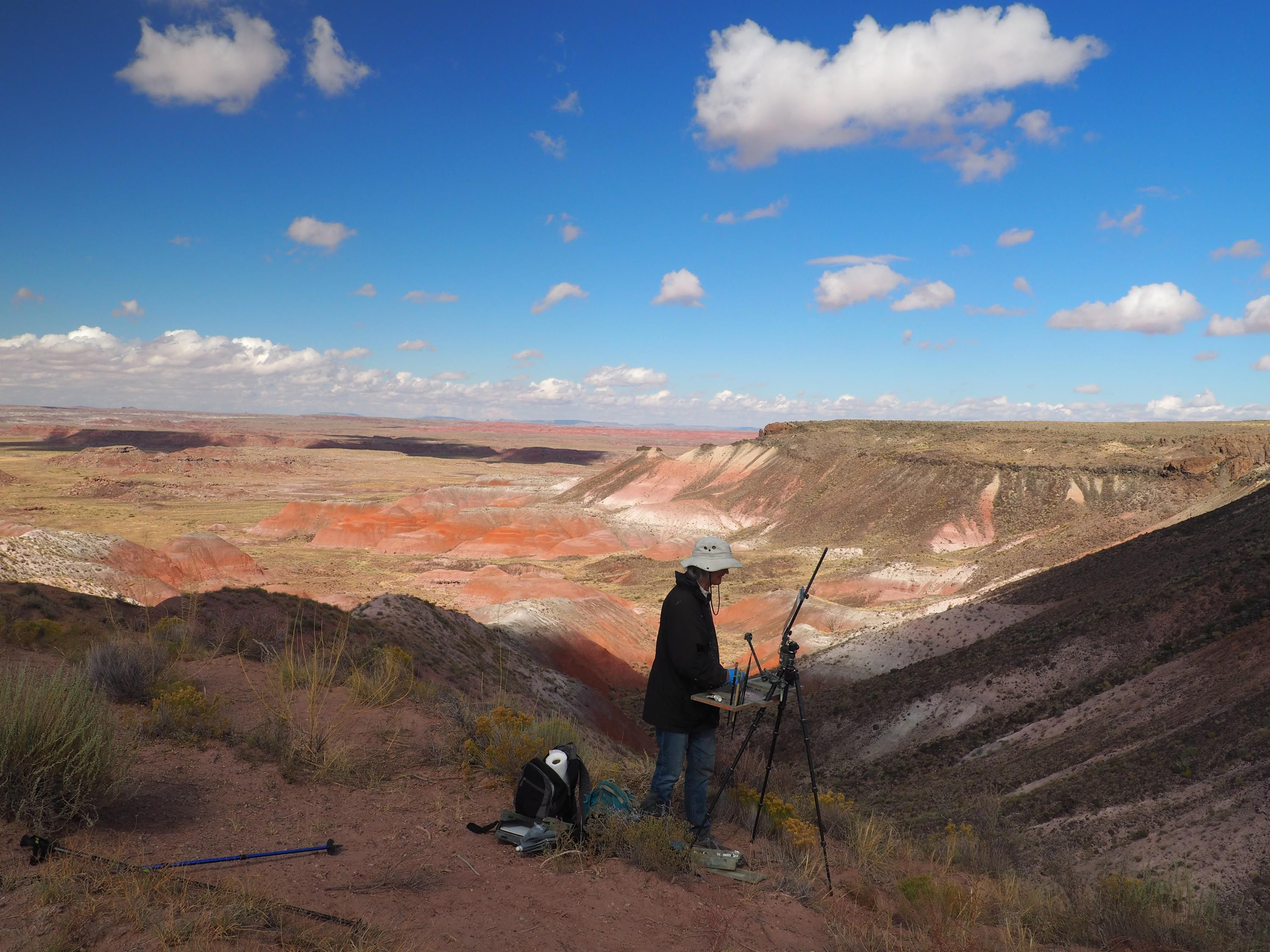 Painting the Petrified Forest in 2020 (With images