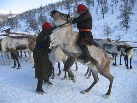 Reindeer images | Mongolian Reindeer Pictures: Dukha Boy with Squirrel Skins from Hunt