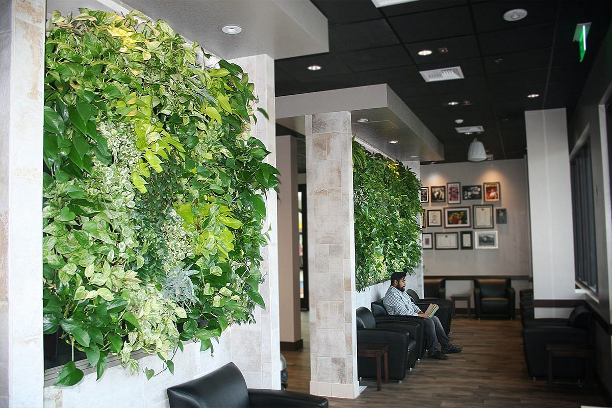 Vertical Goodness 10 DIY Living Walls Kits for Green