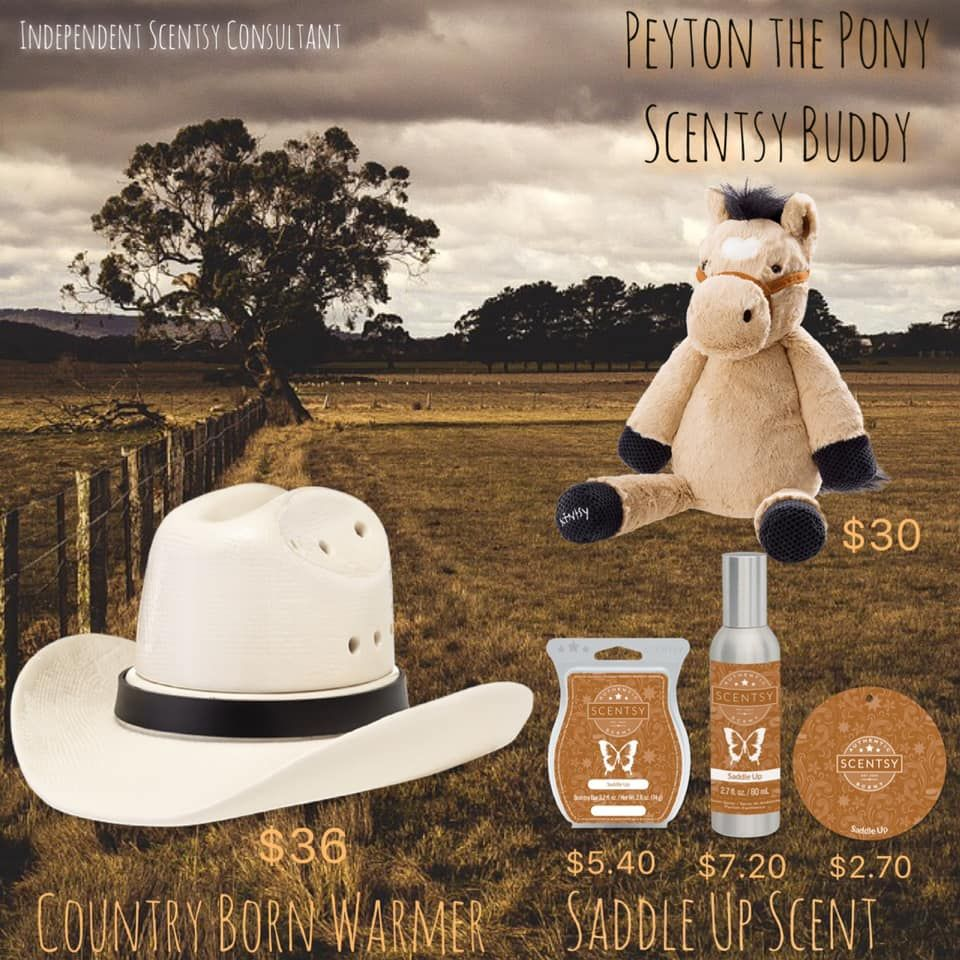 May 2019 Warmer & Scent of the Month Country Born Warmer