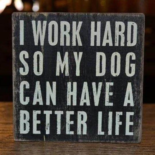 Why I Work Hard http://ibeebz.com