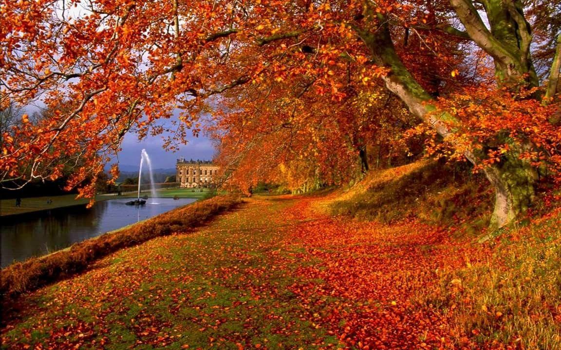 秋 Autumn おしゃれまとめの人気アイデア Pinterest まつ 秋の