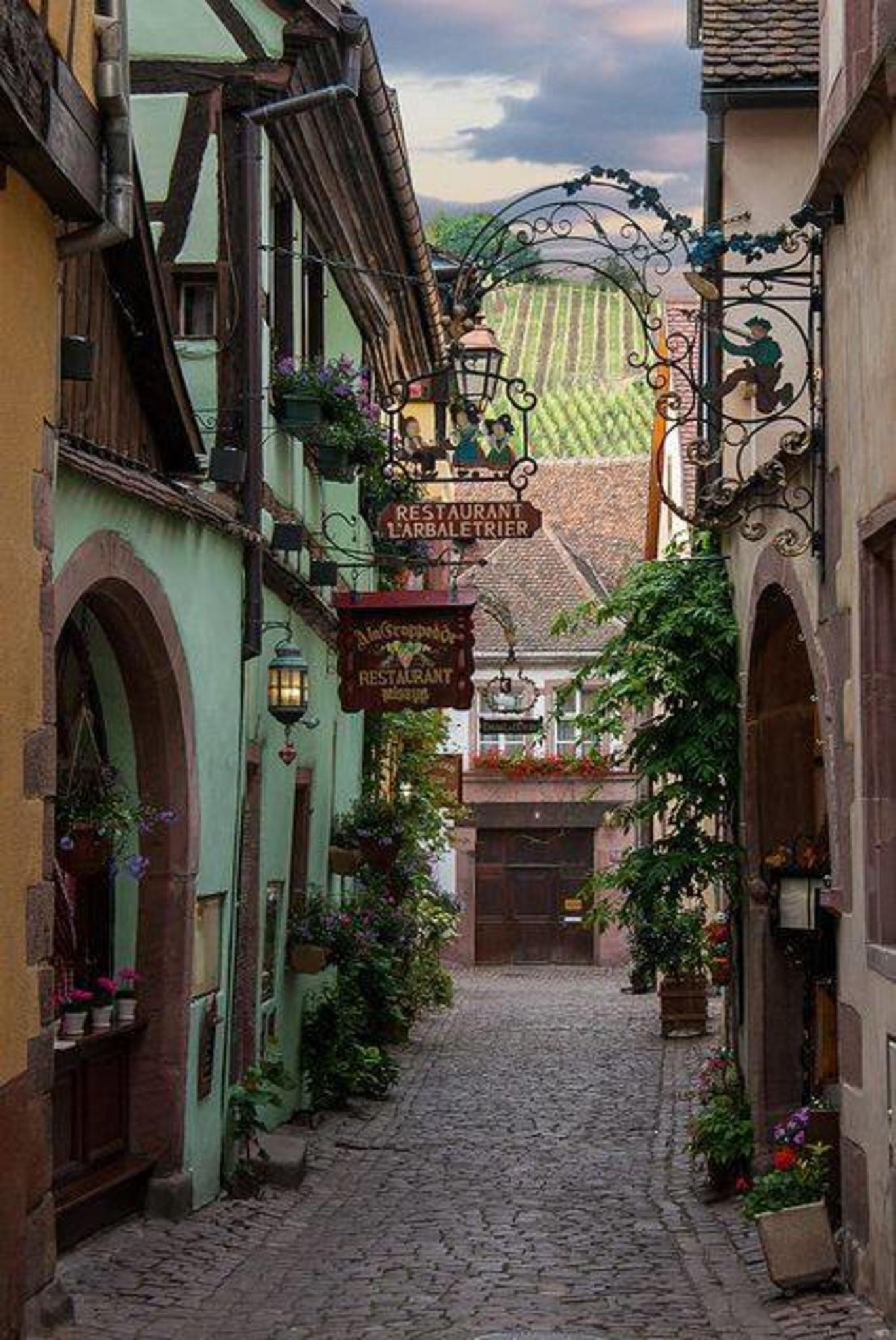 Restaurant L Arbaletrier Riquewihr Alsace France Pretty Places Beautiful Places Places
