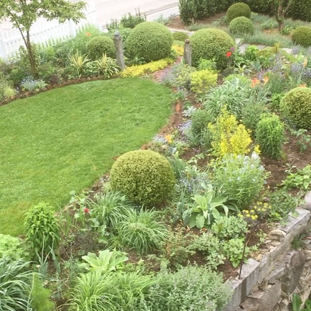 The Upper and Lower Gardens are filling in. The annuals have been added to the Upper Garden and hopefully the Lower Garden will got done today! Plenty of rain has made the gardens pop!