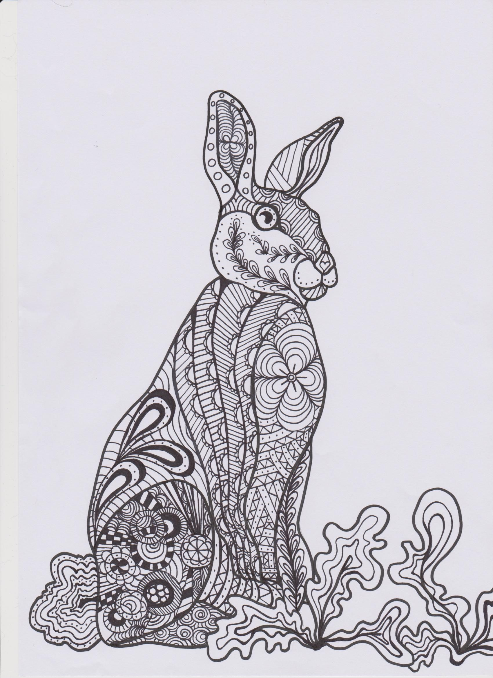 Zentangle Bunny Colouring In Page Art Handouts Coloring Pages