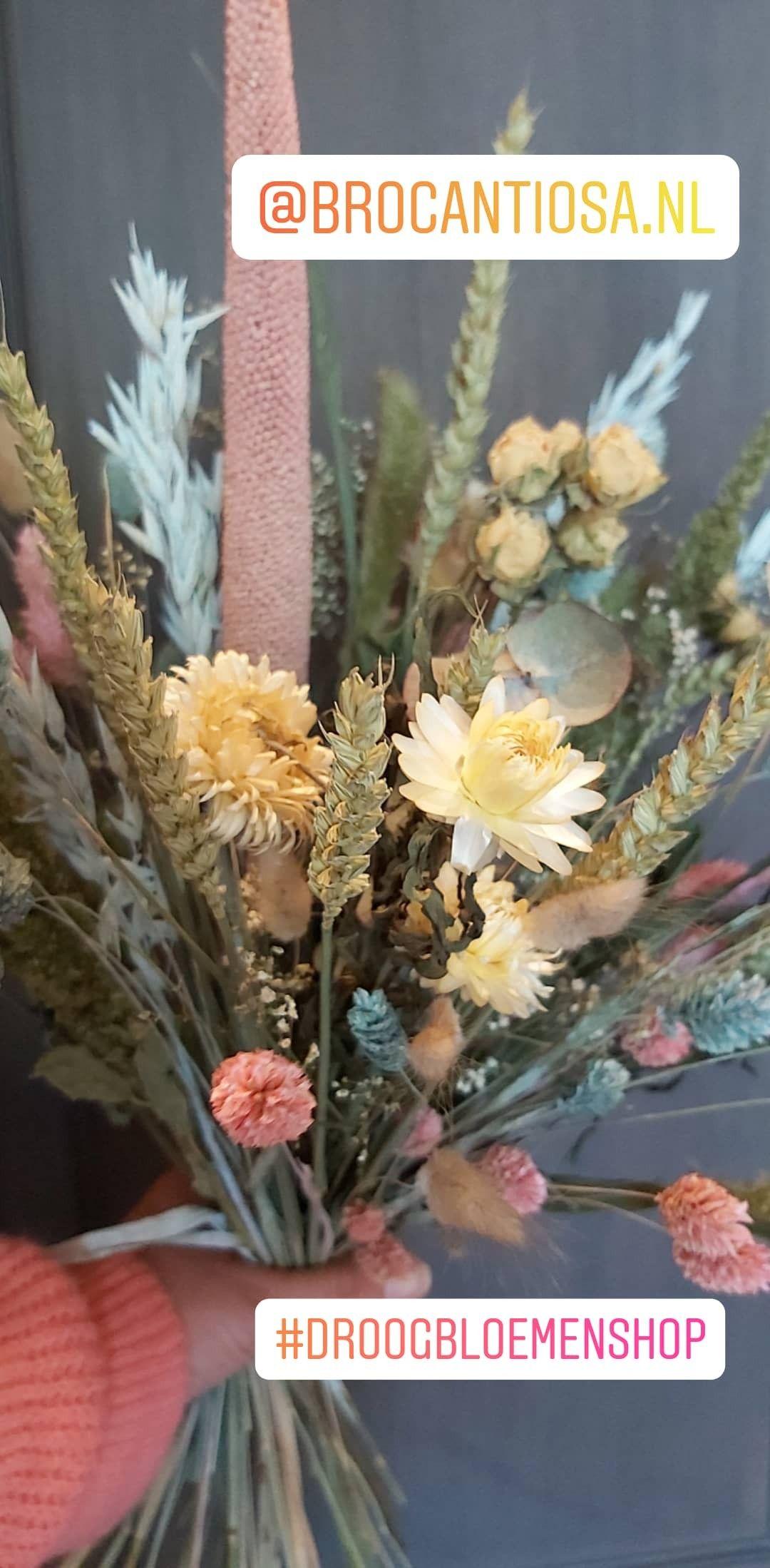 Sweet driedflowers