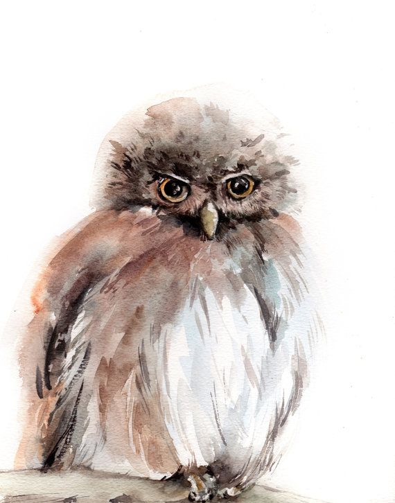 Owl Watercolor Print Owl Painting Watercolour by CanotStopPrints