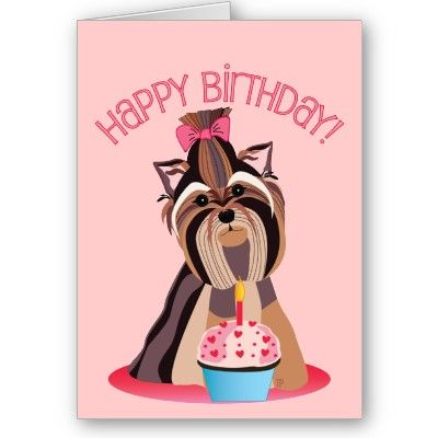 Happy Birthday Yorkshire Terrier Card Zazzle Com Yorkie Dog Birthday Yorkshire Terrier