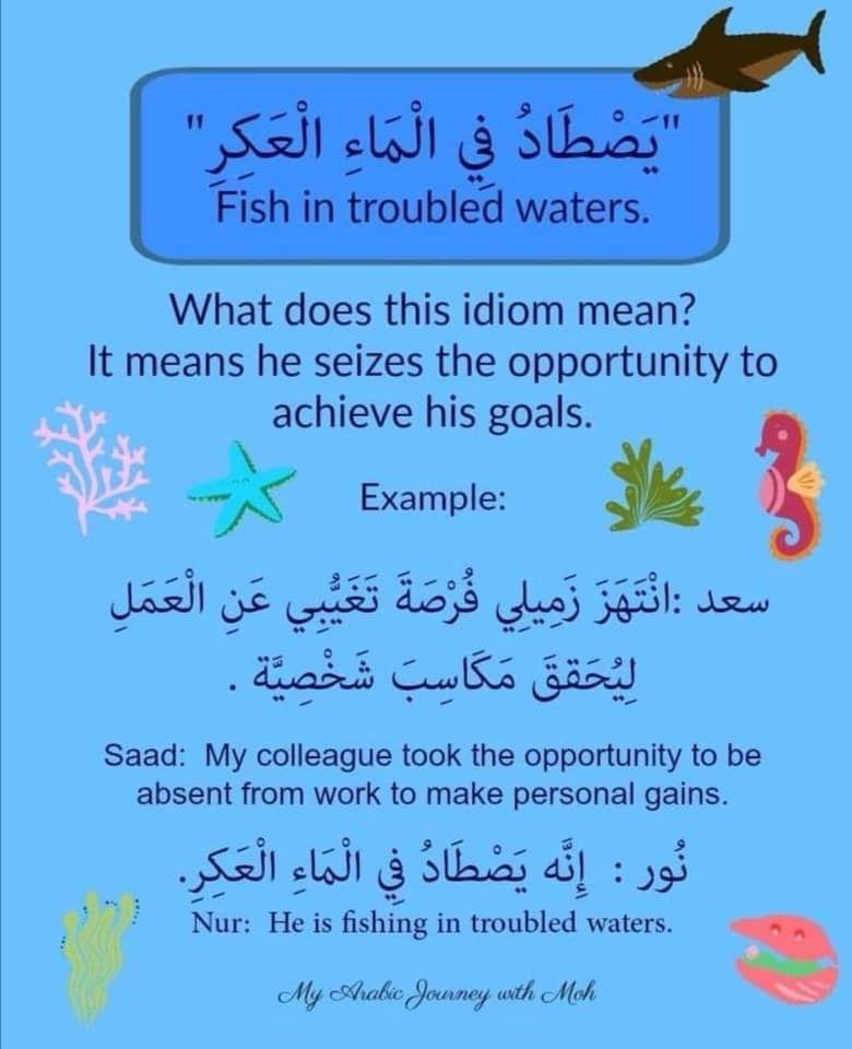 Learning Arabic Msa Fabienne Arabic Phrases Learning Arabic Arabic Sentences