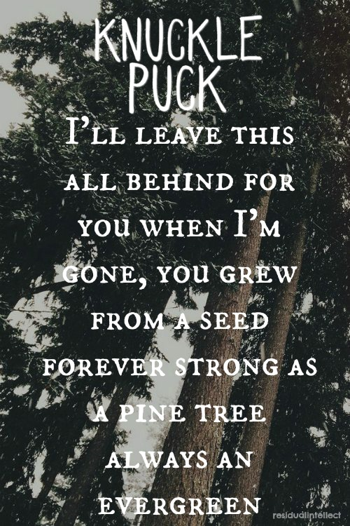 knuckle puck evergreen made by lyndsay music