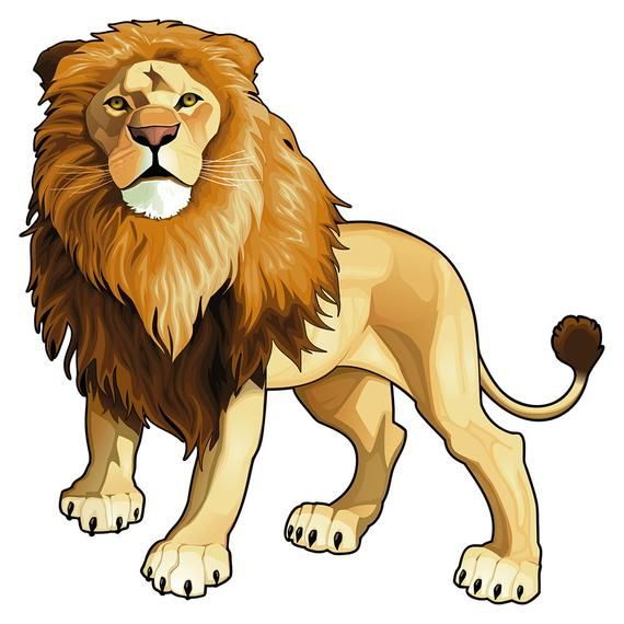 Wall Decal Animals Lion Wall Decal Africa Animals Wall Decal Safari Animals Wall Decal Jungle Animals Wall Decal Lions In 2021 Lion Illustration Lion Drawing Lion Vector