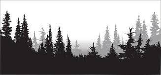Resultado de imagen de pine tree forest silhouette ...