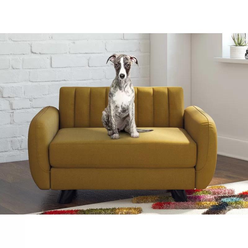 Novogratz Brittany Pet Sofa & Reviews Wayfair.ca in 2020